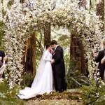 【電影】《Twilight Saga﹕Breaking Dawn Part 1》婚禮和蜜月