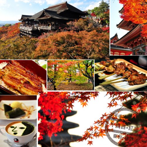 【日本】關西紅葉之旅 • 序