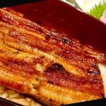 【京都】嵐山紅葉 ②《廣川》鰻魚飯