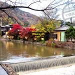 【京都】嵐山紅葉 ①《渡月橋》
