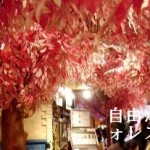 [東京] 第六日Part II – 自由が丘スイーツフォレスト(Sweets Forest)