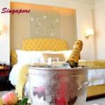 【新加坡】St. Regis Singapore