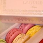 【巴黎】經典甜品 -《Ladurée》外帶篇