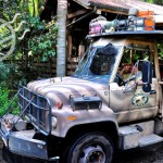【迪士尼世界】《Animal Kingdom》之四 – 《Kilimanjaro Safaris》仿非洲狩獵之旅