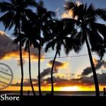 【夏威夷】Road Trip ④《North Shore》難得寧靜的海灘