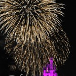 【迪士尼世界】《Magic Kingdom》之七 -《Wishes Nighttime Spectacular》煙花匯演