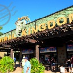 【迪士尼世界】《Animal Kingdom》之一 Expedition Everest 過山車 & Dinosour