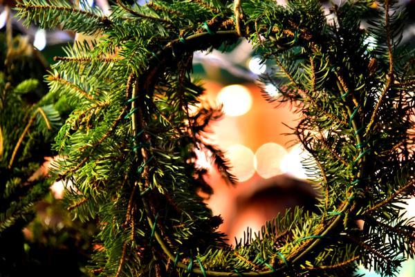 聖誕期間還辦了「札幌慕尼黑聖誕市集」